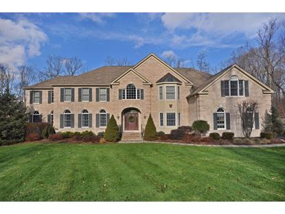 21 SHADOWBROOK WAY , Randolph, NJ
