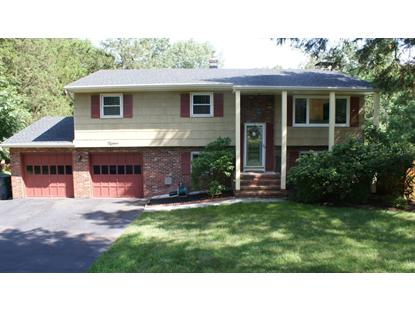 15 Stony Brook Road , Branchburg, NJ