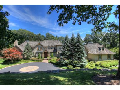 4 Timber Ridge Rd  Mendham, NJ MLS# 3072473