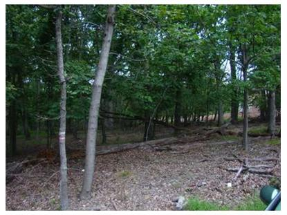 1703 Mountain Top Rd  Bridgewater, NJ MLS# 3090575