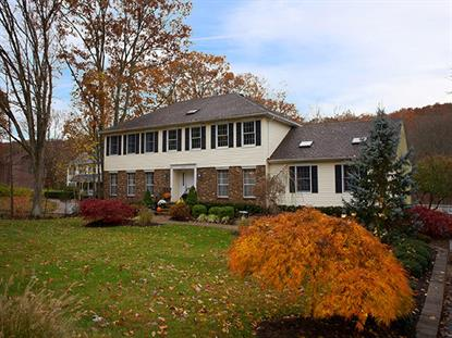 137 Burnt Meadow Rd  Ringwood, NJ MLS# 3093509
