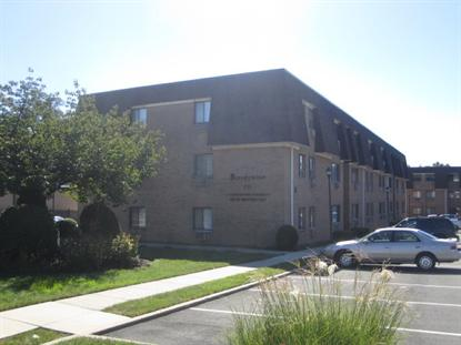 731-733 Belleville Ave Unit A8