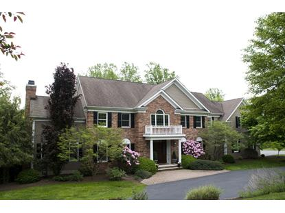 9 Pond View Rd  Chester, NJ MLS# 3113890
