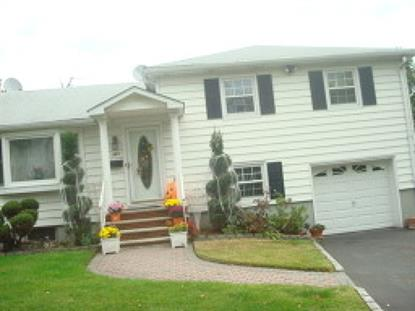 381 Spring St  Union, NJ MLS# 3114753