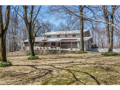 8 PRIDES XING  Chester, NJ MLS# 3121743