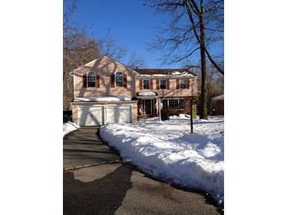 42 Franklin Ave, Livingston, NJ 07039