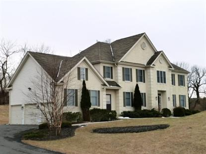 25 Rose Run  West Amwell, NJ MLS# 3126824