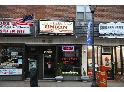 1040 Stuyvesant Ave  Union, NJ MLS# 3128495