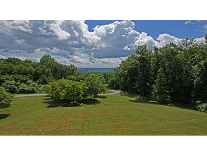 8 McConachy Ln  Blairstown, NJ MLS# 3132452