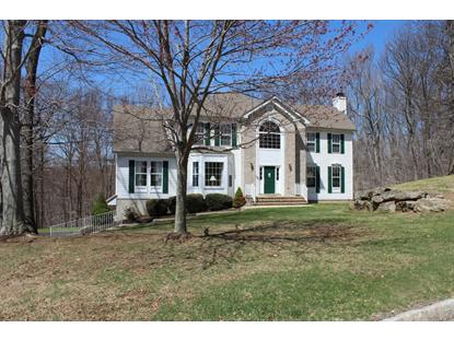 6 DONNA LANE  Mount Olive, NJ MLS# 3133748