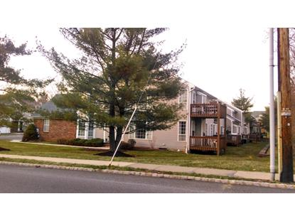 38 Daisy Ct  Readington, NJ MLS# 3133788