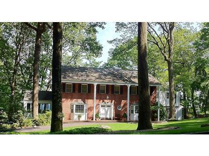 38 Long Ridge Rd  Parsippany-Troy Hills Twp., NJ MLS# 3134265