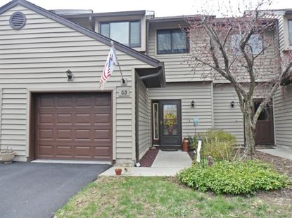 53 Eagle Dr  Hampton Township, NJ MLS# 3134660