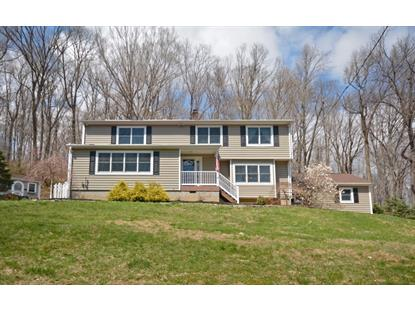 4 Hillside Ter  Bethlehem Twp, NJ MLS# 3135301