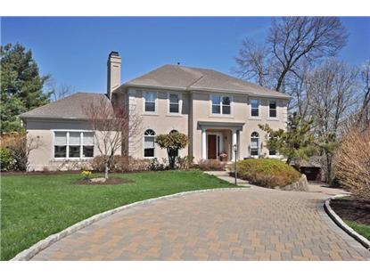 10 Pellington Ct  Montville, NJ MLS# 3136259