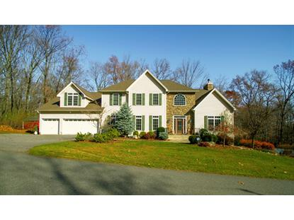 4 Mountain Ter  Blairstown, NJ MLS# 3138125