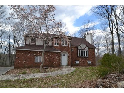 96 Upper Hibernia Rd  Rockaway Twp., NJ MLS# 3138330