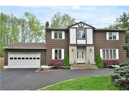 123 Timber Hill Dr  East Hanover, NJ MLS# 3140357