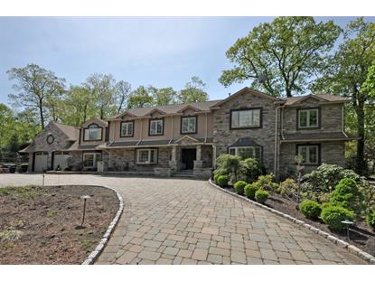 2 Seven Trails Ln  Wayne, NJ MLS# 3142152