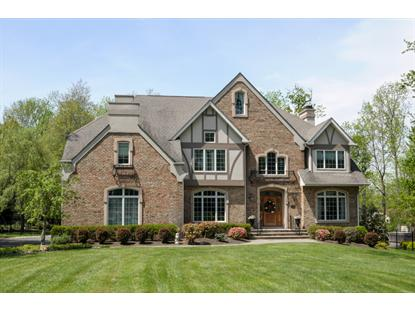 32 Old Farm Rd  Berkeley Heights, NJ MLS# 3142313