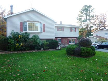 116 Mt Olive Rd  Mount Olive, NJ MLS# 3143268