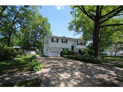 145 Grove St  South Plainfield, NJ MLS# 3143991