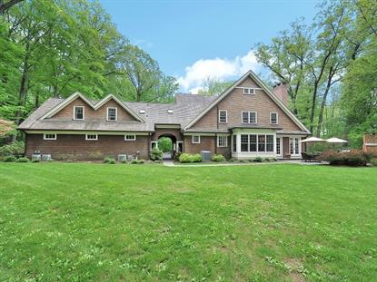 203 Blue Mill Rd  Harding Twp., NJ MLS# 3144272