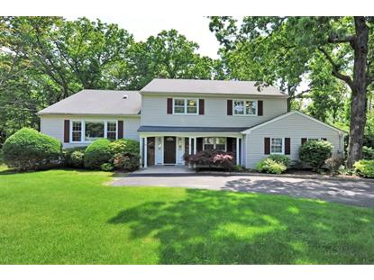 36 Roland Rd  Berkeley Heights, NJ MLS# 3145182