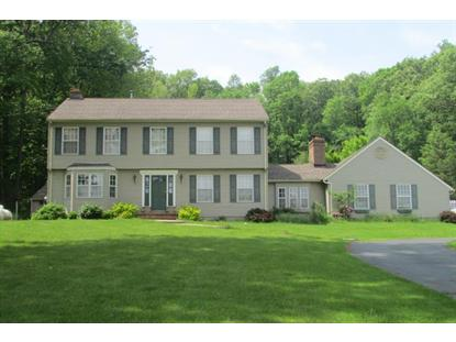 311 Pleasant Hill Rd  Chester, NJ MLS# 3146069