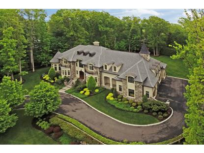 235 Terrace Rd  Franklin Lakes, NJ MLS# 3147031