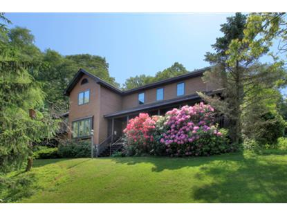 31 Kishpaugh Rd  Blairstown, NJ MLS# 3147209