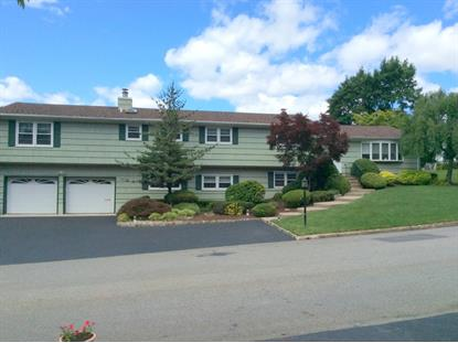 10 De Young Dr  Little Falls, NJ MLS# 3148086