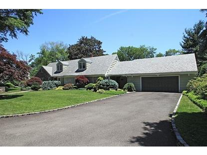 25 Pearl Brook Dr  Clifton, NJ MLS# 3148191