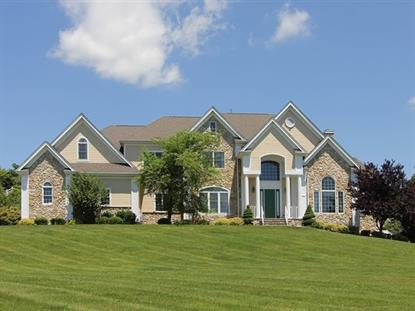2 Trout Brook Ct  Chester, NJ MLS# 3149098