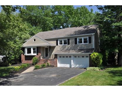 26 Christy Ln  Springfield, NJ MLS# 3151118