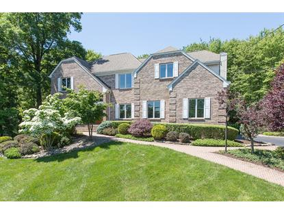 1147 Delaware Dr  Bridgewater, NJ MLS# 3151249