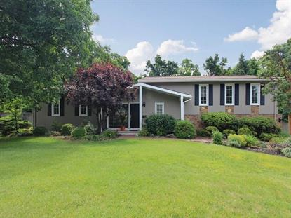 38 Tree Top Dr  Springfield, NJ MLS# 3151310