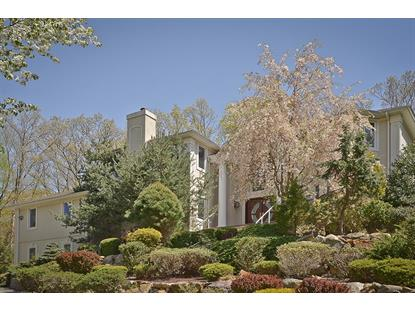 14 High Mountain Dr  Montville, NJ MLS# 3151542