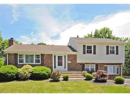 328 South Plainfield Ave  South Plainfield, NJ MLS# 3151752
