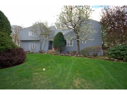 3 Oak Fern Dr  Warren, NJ MLS# 3152351