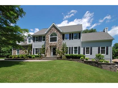 2 Woodens Ln  West Amwell, NJ MLS# 3152746