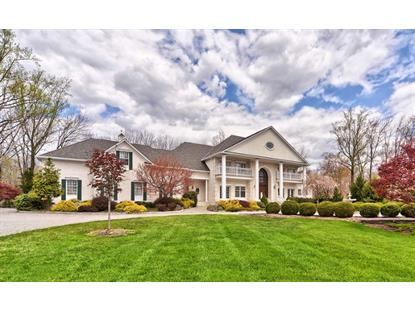 20 Canoe Brook Ln  Bernards Township, NJ MLS# 3153503