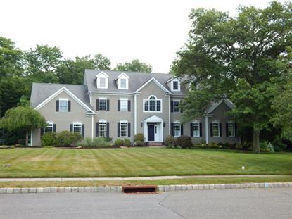 8 Holmes Ct  Morris Township, NJ MLS# 3154295