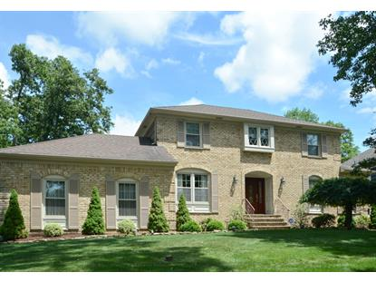 15 Old Cannon Rd  Berkeley Heights, NJ MLS# 3154567