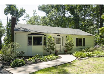 1723 Forest Hill Avenue  Montgomery, NJ MLS# 3157456