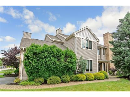 41 Louis Dr  Montville Township, NJ MLS# 3157589