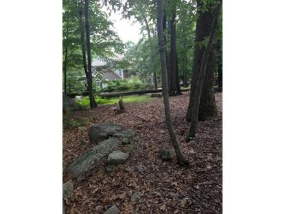 43 Big Spring Rd  Califon, NJ MLS# 3159025