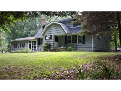 42 Haggerty Rd  Frankford, NJ MLS# 3159240