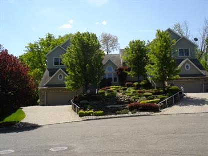 3 CAROLE CT  Lincoln Park, NJ MLS# 3159838