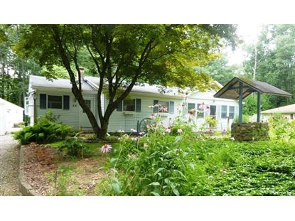 23 The Trl  Hackettstown, NJ MLS# 3161013